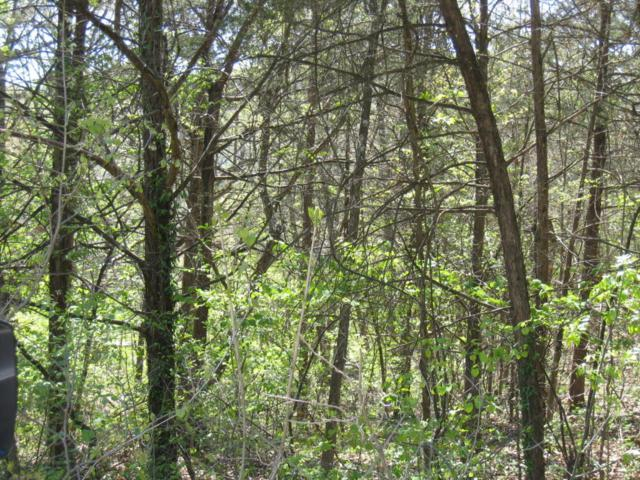 Lot 424 Blue Springs Lane, Branson West, MO 65737 (MLS #60076308) :: Good Life Realty of Missouri