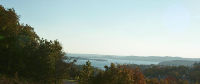 395 Canyon Parkway Lot 10, Branson, MO 65616 (MLS #60076563) :: Team Real Estate - Springfield
