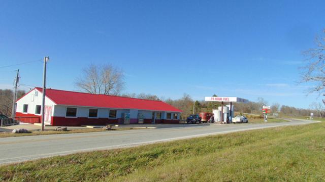 Rr1 Highway 95, Vanzant, MO 65768 (MLS #60077429) :: Sue Carter Real Estate Group