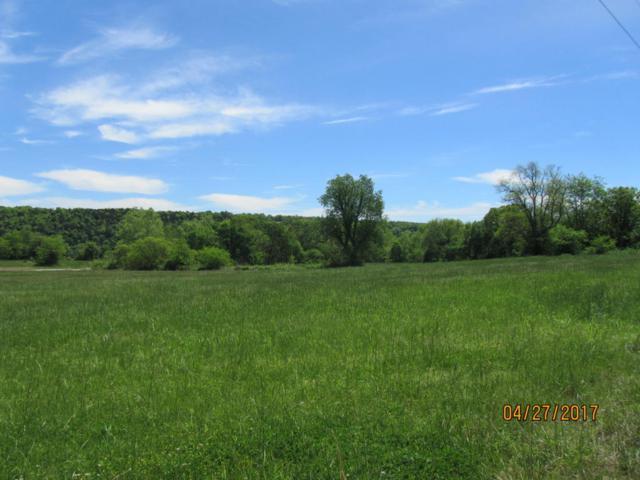 Tbd Oremus, Forsyth, MO 65653 (MLS #60077505) :: Team Real Estate - Springfield