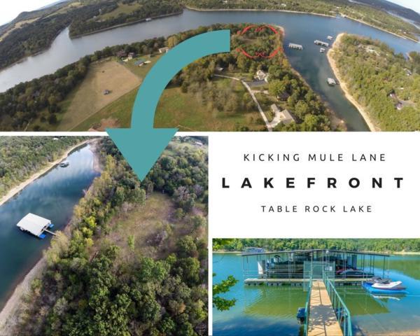 Tbd Lot 3A, Kicking Mule Lane Lane, Lampe, MO 65681 (MLS #60079015) :: Sue Carter Real Estate Group