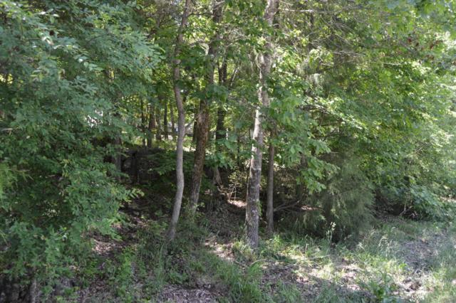 Tbd Wildflower Lots 31, & 32, Kimberling City, MO 65686 (MLS #60079696) :: Greater Springfield, REALTORS