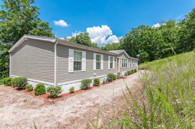 173 Oakwood Road, Reeds Spring, MO 65737 (MLS #60084701) :: Select Homes