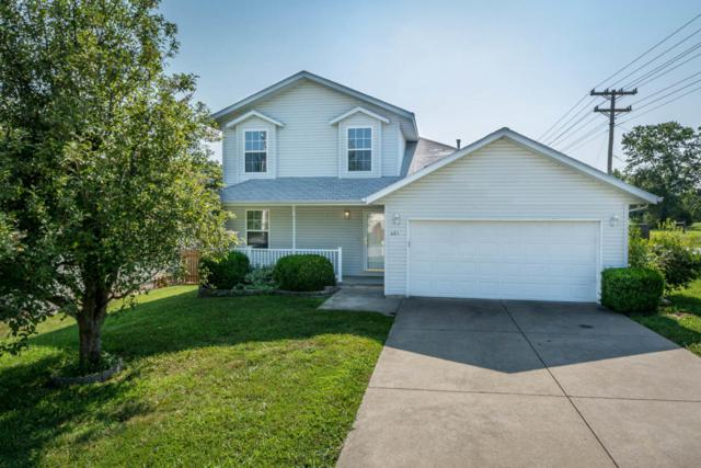 401 W White Ash Road, Nixa, MO 65714 (MLS #60084906) :: Select Homes