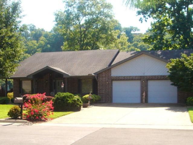 311 Sherwood Drive, Branson, MO 65616 (MLS #60085216) :: Select Homes