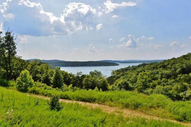 Tbd Bayview Trail, Lampe, MO 65681 (MLS #60085313) :: Select Homes