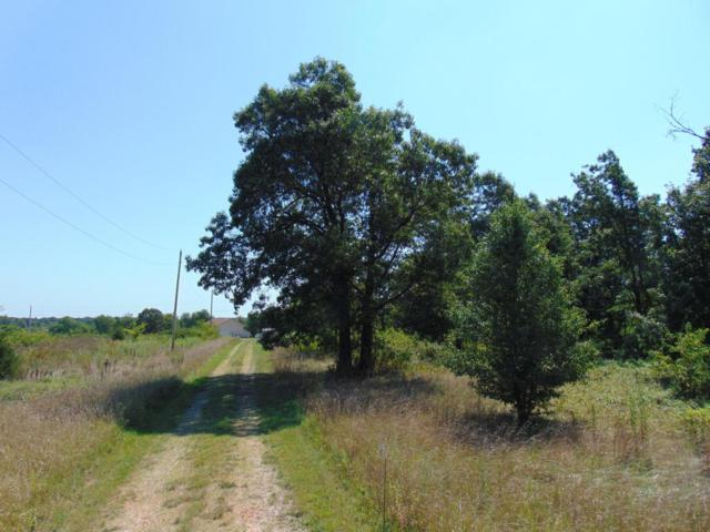 Lot 19 Private Road 1086, Cassville, MO 65625 (MLS #60085317) :: Select Homes