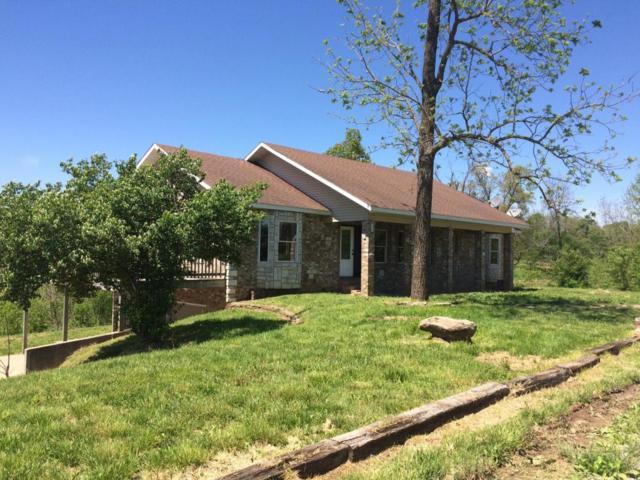 61 Joe Martin Lane, Crane, MO 65633 (MLS #60086000) :: Select Homes