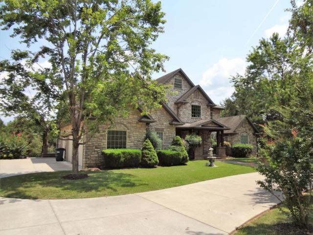 785 Meadow Lane, Branson, MO 65616 (MLS #60086616) :: Greater Springfield, REALTORS