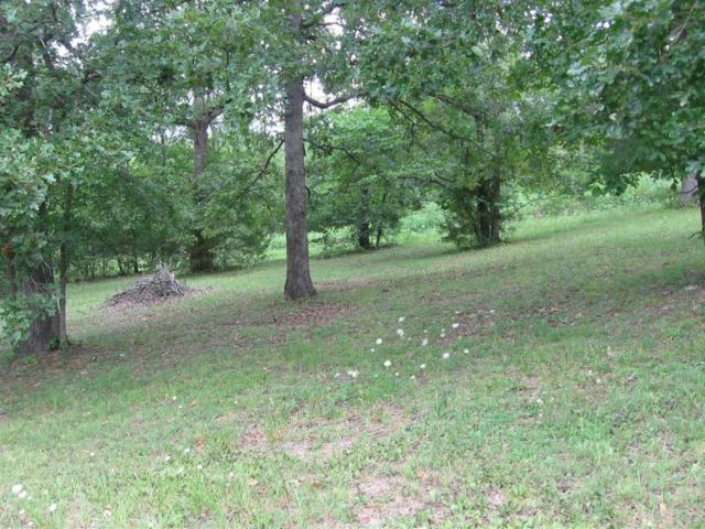 Lot 57 Foxwoods Circle, Shell Knob, MO 65747 (MLS #60086736) :: Weichert, REALTORS - Good Life