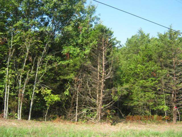Tbd Royal  Point Drive, Shell Knob, MO 65747 (MLS #60086957) :: Weichert, REALTORS - Good Life