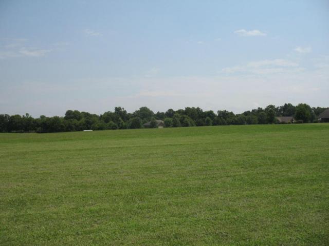 296 S Folks Lane, Republic, MO 65738 (MLS #60087140) :: Greater Springfield, REALTORS