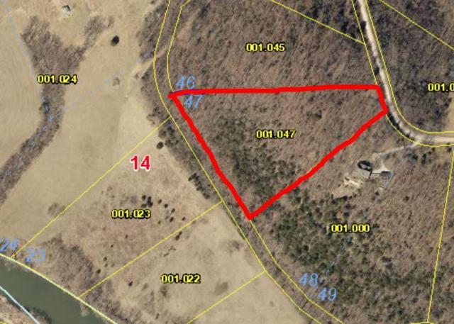 1176 Rivermeade Loop Road, Galena, MO 65656 (MLS #60087215) :: Greater Springfield, REALTORS