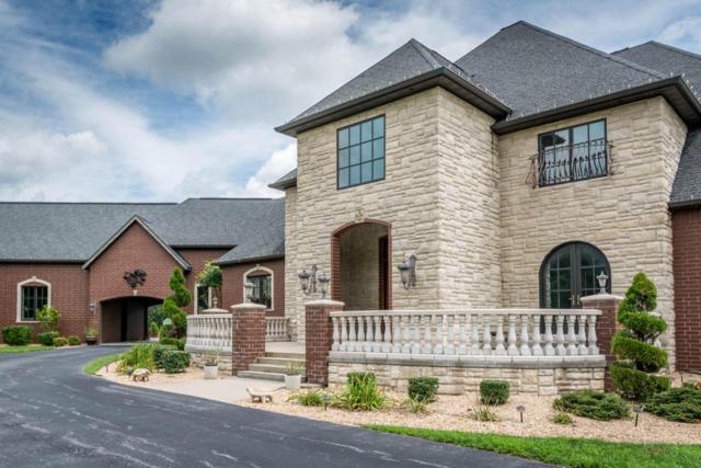 3783 E Forrest Ridge Lane, Rogersville, MO 65742 (MLS #60087993) :: Team Real Estate - Springfield