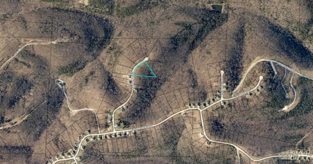 Lot 112 N Ridge Place, Branson, MO 65616 (MLS #60088274) :: Weichert, REALTORS - Good Life