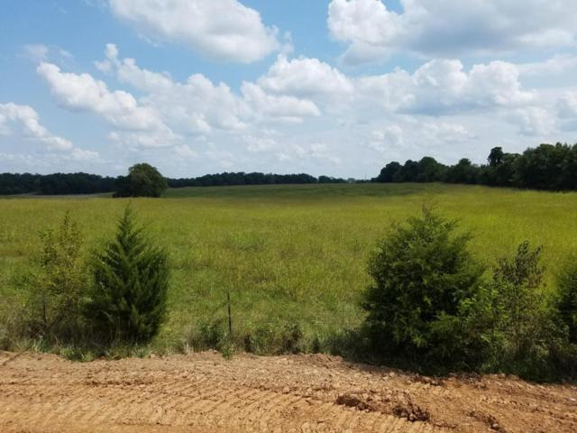 1332 N Opportunity Avenue, Republic, MO 65738 (MLS #60089134) :: Select Homes