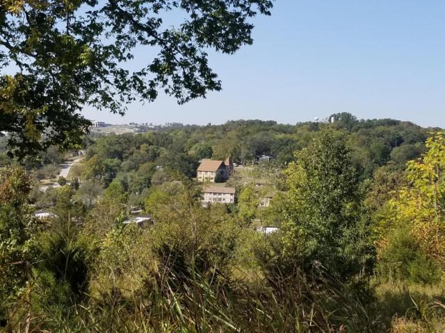 304 Myrtle Avenue, Hollister, MO 65672 (MLS #60089831) :: Team Real Estate - Springfield