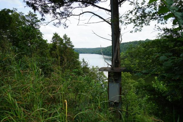 Lot 219 Pomme De Terre Road, Branson, MO 65616 (MLS #60090102) :: Weichert, REALTORS - Good Life