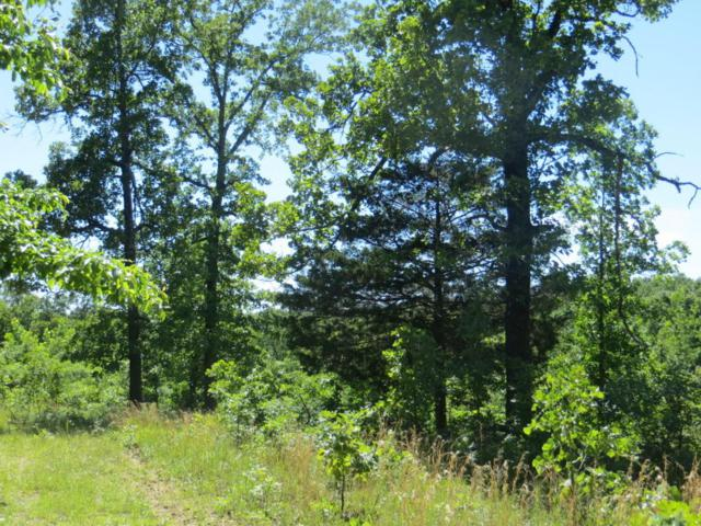 Tbd Nublin Ridge Road, Ravenden, AR 72459 (MLS #60090588) :: Greater Springfield, REALTORS