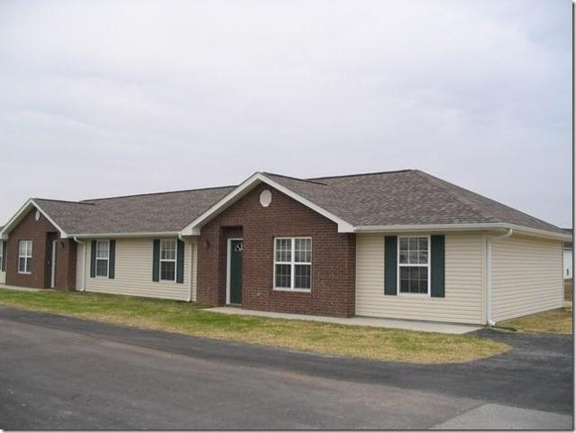 96 Wellspring Drive, Reeds Spring, MO 65737 (MLS #60090622) :: Select Homes