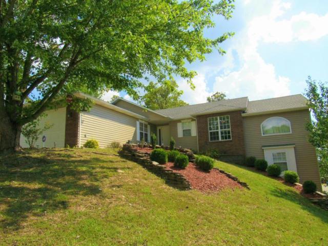 215 Horizon Drive, Branson, MO 65616 (MLS #60090811) :: Select Homes