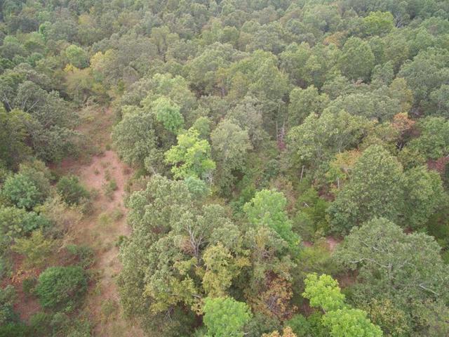 Tbd County Road 7780, Moody, MO 65777 (MLS #60090876) :: Select Homes