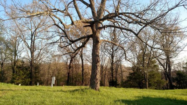 262 Stacy Ln, Crane, MO 65633 (MLS #60091965) :: Good Life Realty of Missouri