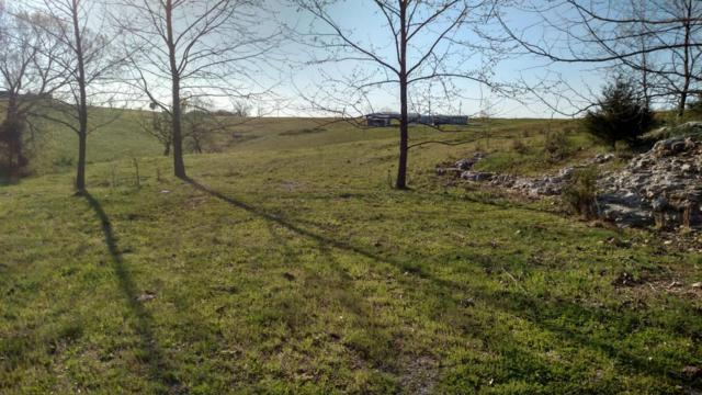 3300 Warner Road, Crane, MO 65633 (MLS #60091968) :: Good Life Realty of Missouri