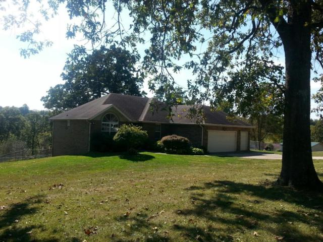 1596 Green Valley Road, Clever, MO 65631 (MLS #60092020) :: Greater Springfield, REALTORS