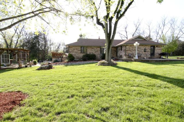5223 E Farm Rd 168, Rogersville, MO 65742 (MLS #60092300) :: Greater Springfield, REALTORS