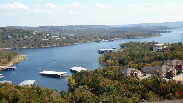 14 Treehouse Lane #17, Branson, MO 65616 (MLS #60092525) :: Weichert, REALTORS - Good Life