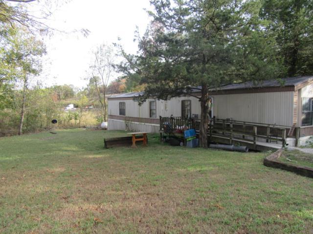 462 Buttercup Drive Drive, Branson, MO 65616 (MLS #60092959) :: Greater Springfield, REALTORS