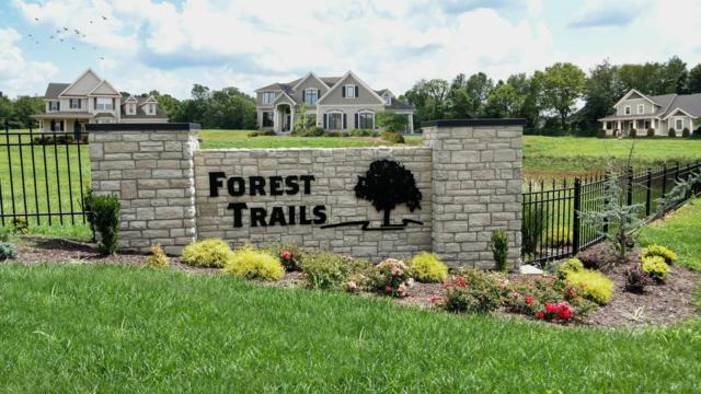 4701 E Forest Trails Drive Lot 9, Springfield, MO 65809 (MLS #60092960) :: Greater Springfield, REALTORS