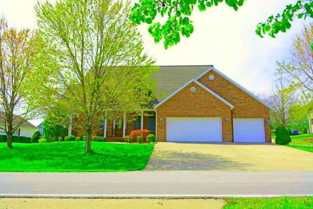 362 Hidden Shores Drive, Branson West, MO 65737 (MLS #60093498) :: Select Homes