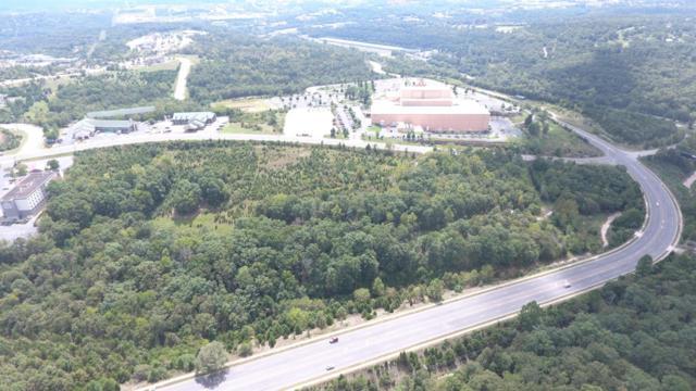 Tbd Shepherd Of The Hills Expressway, Branson, MO 65616 (MLS #60093844) :: Team Real Estate - Springfield