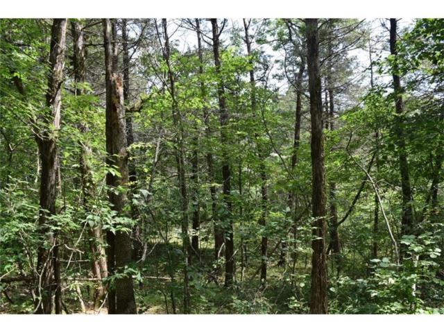 51.96ac N Cyclone Road, Pineville, MO 64856 (MLS #60094044) :: Weichert, REALTORS - Good Life