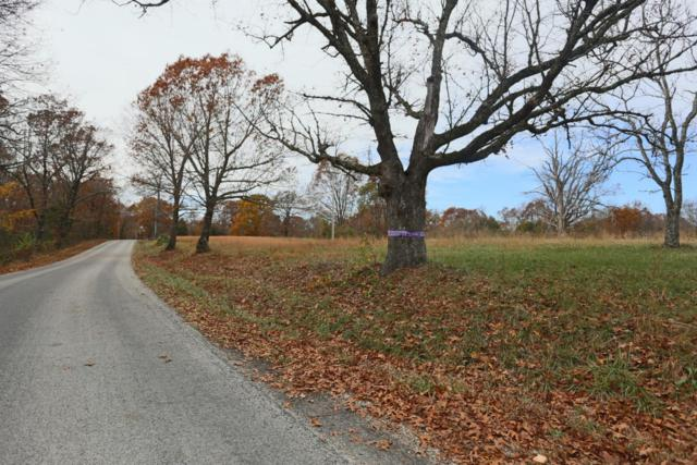 Tbd East Gate, Reeds Spring, MO 65737 (MLS #60094452) :: Team Real Estate - Springfield