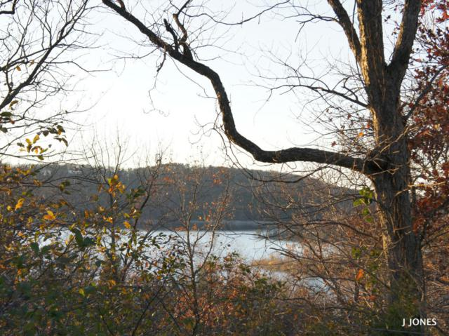 Lot 13a Indian Valley Road, Branson West, MO 65737 (MLS #60095323) :: Good Life Realty of Missouri