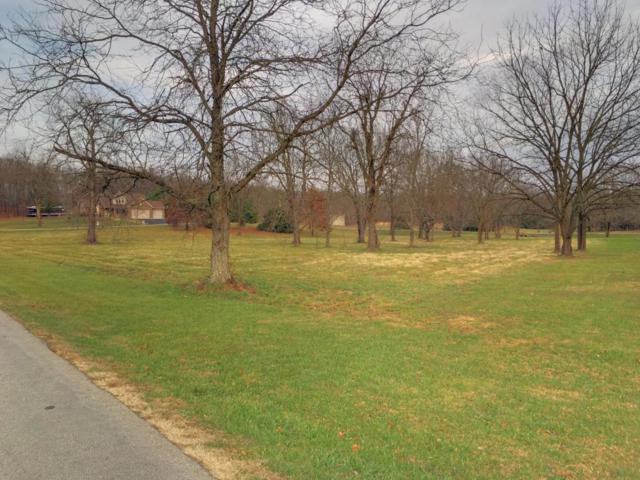 654 White Oak Road Lot 1A, Rogersville, MO 65742 (MLS #60095929) :: Greater Springfield, REALTORS