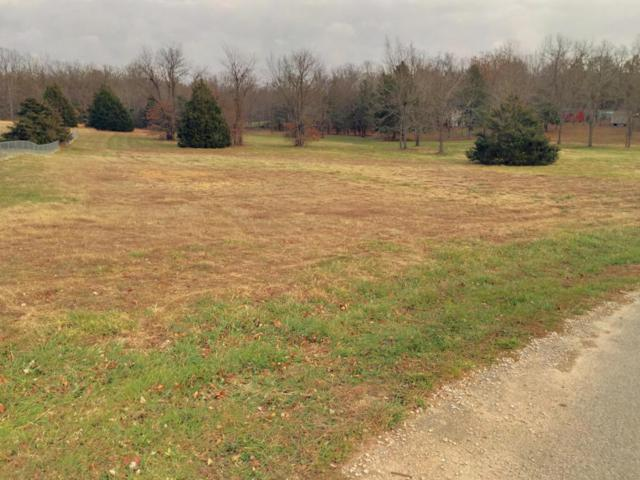 200 Autumn Circle Lot 1B, Rogersville, MO 65742 (MLS #60095935) :: Greater Springfield, REALTORS