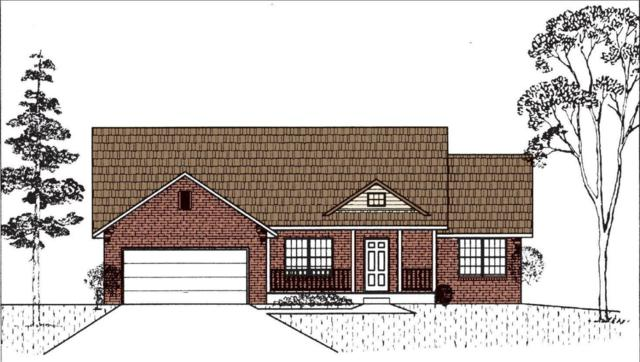 121 Caterpillar Lane, Branson, MO 65616 (MLS #60096245) :: Greater Springfield, REALTORS