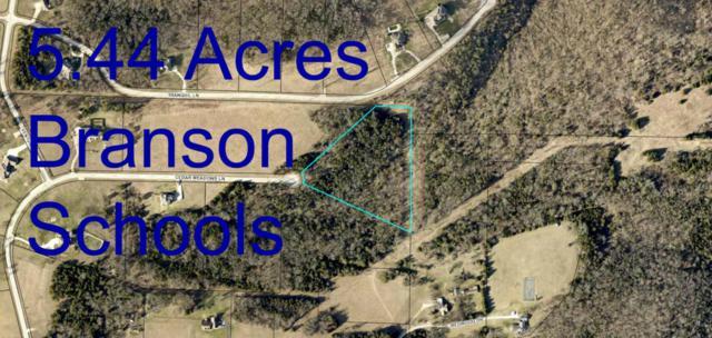 525 Cedar Meadows Lane, Branson, MO 65616 (MLS #60096273) :: Greater Springfield, REALTORS