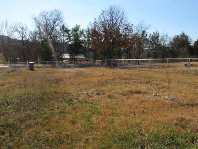 186 Plaza Drive, Branson, MO 65616 (MLS #60096275) :: Greater Springfield, REALTORS