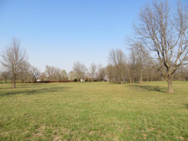 0 E Farm Road 150, Rogersville, MO 65742 (MLS #60096308) :: Greater Springfield, REALTORS