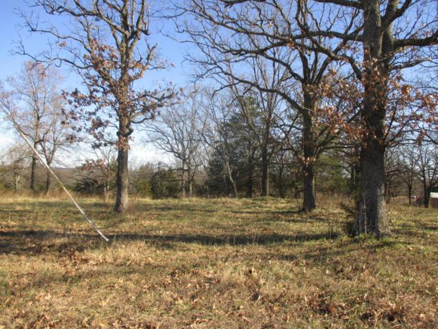 Lot 1 Highway U Peaceful Hills Sub., Hermitage, MO 65668 (MLS #60096325) :: Greater Springfield, REALTORS