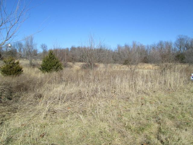 Tbd Highway M, Everton, MO 65646 (MLS #60098829) :: Greater Springfield, REALTORS