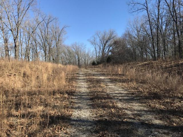 0 Listen Lane, Clever, MO 65631 (MLS #60099719) :: Greater Springfield, REALTORS