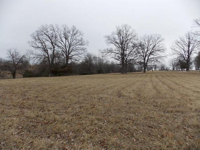0 Beef Lane, Willard, MO 65781 (MLS #60099803) :: Greater Springfield, REALTORS
