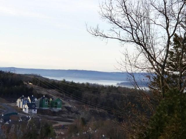 Tbd Lot 17 Canyon Parkway, Branson, MO 65616 (MLS #60100444) :: Team Real Estate - Springfield