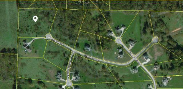 1345 W Peyton Place, Nixa, MO 65714 (MLS #60100738) :: Sue Carter Real Estate Group